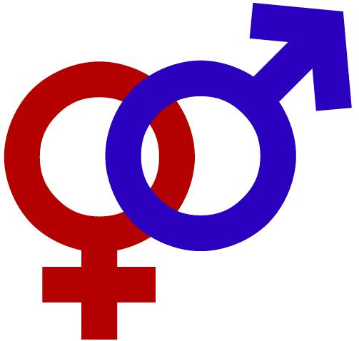 "Feminismo, género y ""perspectiva de género"""